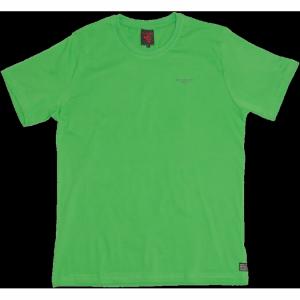12zp01m100 zielony